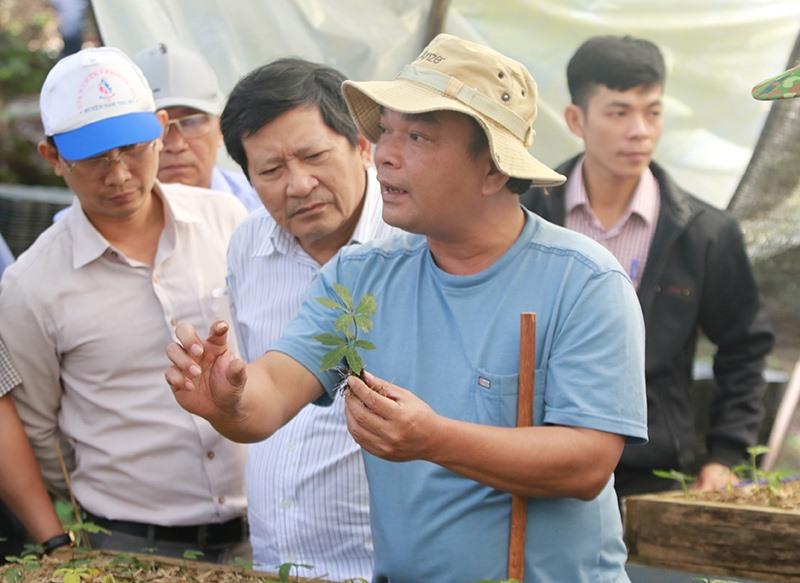 Đoàn giám sát HĐND tỉnh thăm trại sâm giống Ngọc Linh. Ảnh: C.N