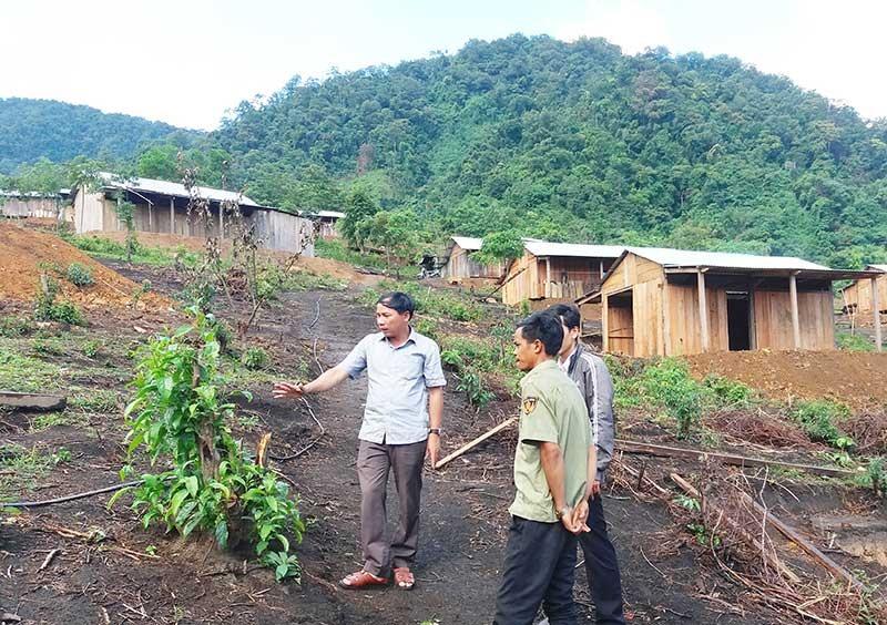 Sự linh hoạt trong sắp xếp dân cư giúp Nam Trà My hoàn thành vượt chỉ tiêu phê duyệt tái định cư theo Nghị quyết 12 của HĐND tỉnh. Ảnh: NGƯỚC CÔNG