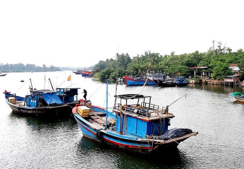 Sở hữu tàu thuyền nhỏ, ngư dân Quảng Nam có nhu cầu vay vốn đóng mới tàu công suất lớn sản xuất xa bờ. Ảnh: QUANG VIỆT