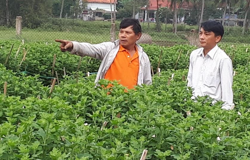 Hội Nông dân tỉnh hỗ trợ nông dân vay vốn trồng hoa tết. Ảnh: N.V.S