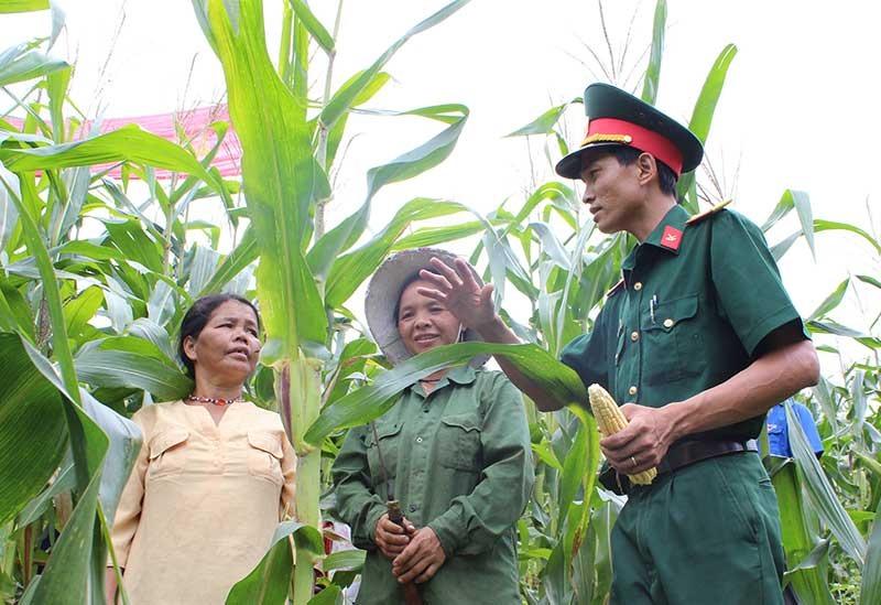 Bộ đội tập huấn kỹ thuật nông nghiệp cho người dân vùng cao.