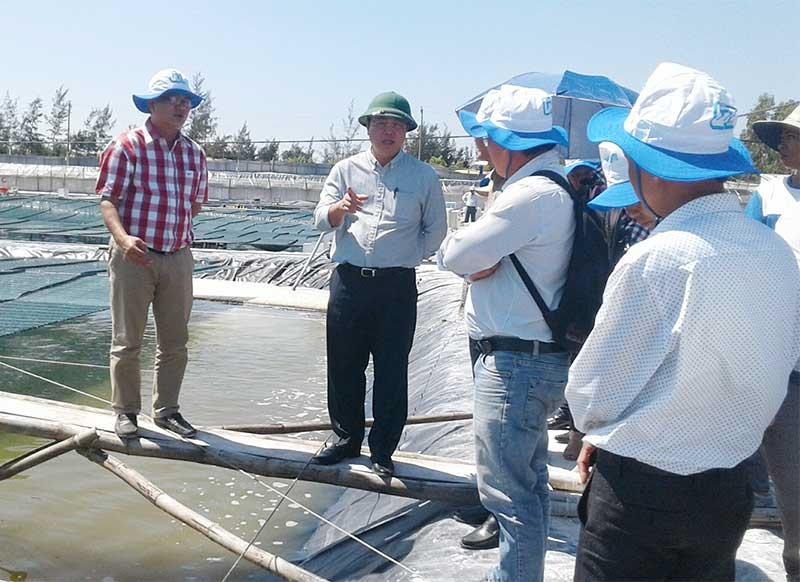 Chủ tịch UBND tỉnh Lê Trí Thanh kiểm tra mô hình của Công ty CP nuôi tôm công nghệ cao QN Tek (Bình Hải, Thăng Bình). Ảnh: V.S