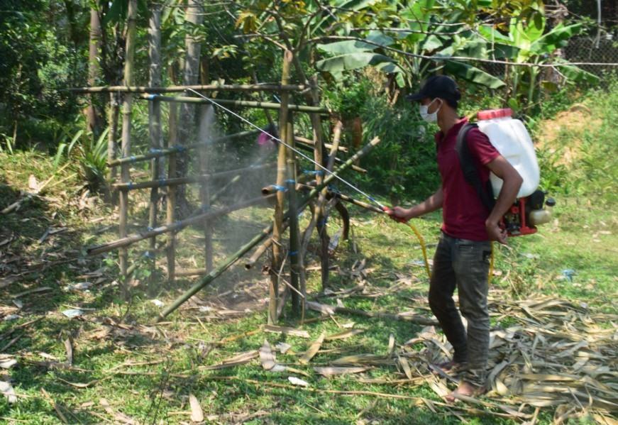Huyện Phước Sơn đang đẩy mạnh phòng chống dịch LMLM. Ảnh: B.A