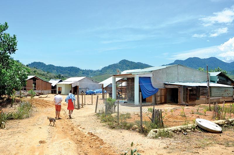 Vùng đất tái định cư ở thôn 4 xã Phước Hiệp, bố trí đất ở cho dân vùng sạt lở dọc sông Trường.Ảnh: T.H