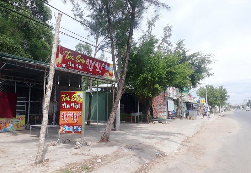 Nhiều trường hợp xây dựng trên đất trồng cây lâu năm dọc hai bên đường đi vào Khu công nghiệp Tam Thăng. Ảnh: X.T