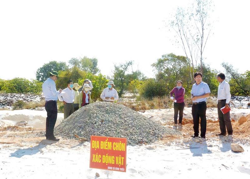 Điểm chôn lấp xác động vật tại xã Bình Triều (Thăng Bình). Ảnh: L.Anh