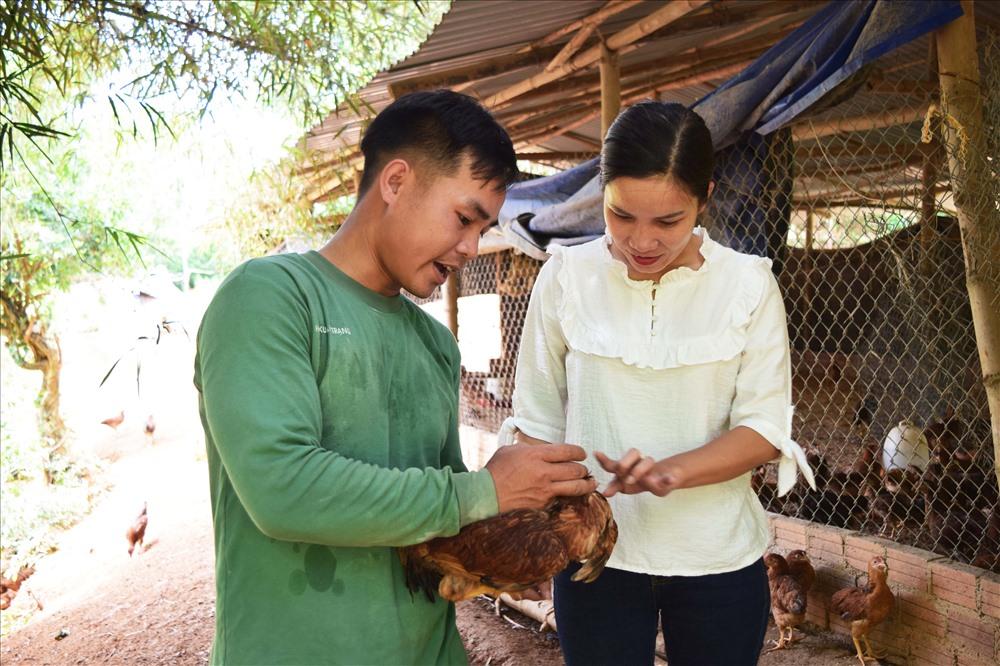 Anh Hồ Xuân Trạng hướng dẫn kỹ thuật theo dõi bệnh ở đàn gà. Ảnh: THÁI CƯỜNG