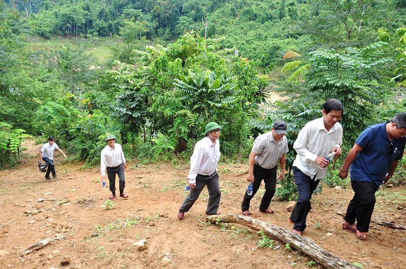 Băng bộ qua những con dốc dựng đứng để vào khu vực trồng sa nhân. Ảnh: V.ANH