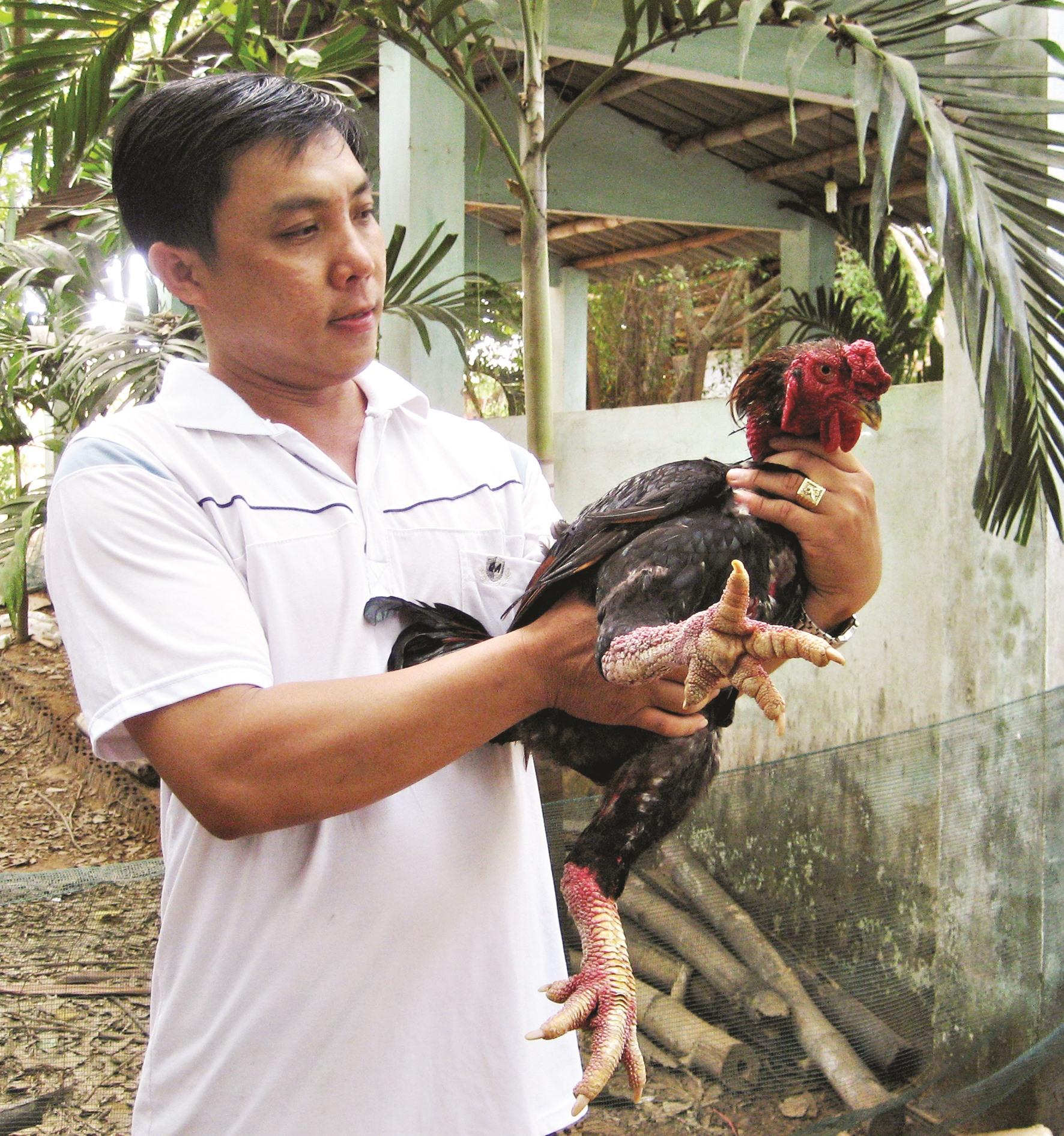 Sau nhiều lần thất bại, anh Nguyễn Thanh Tuấn đã bước đầu thành công trên con đường khởi nghiệp. Ảnh: A.Đ