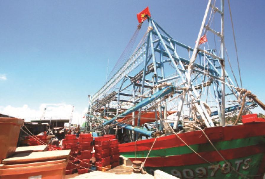 Bến cập tàu liền bờ có thể phục vụ cho nhiều tàu công suất 1.000 CV, giảm bớt công vận chuyển so với bến cập xa bờ trước đây. Ảnh: T.C