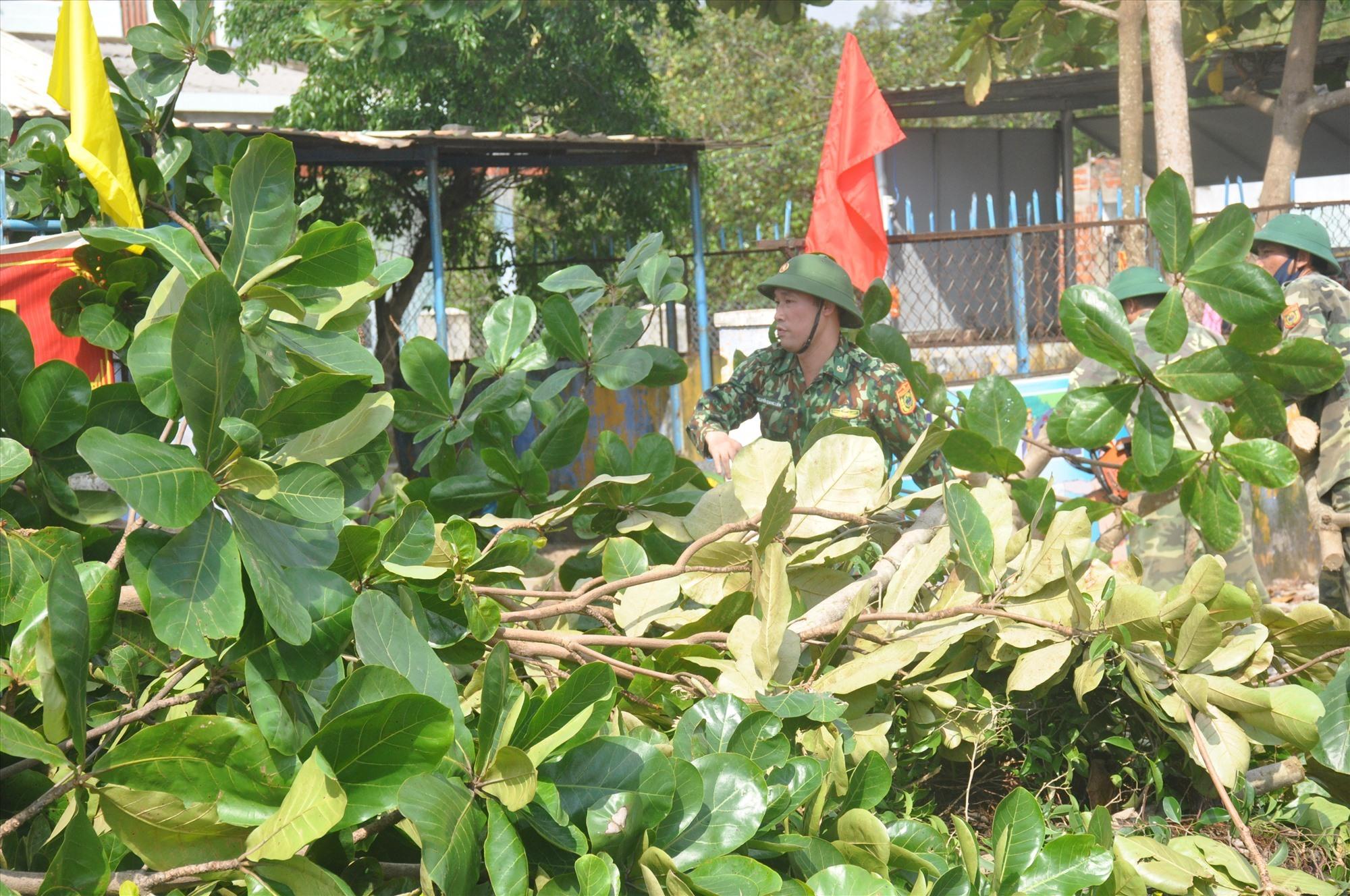 Lực lượng dân quân giúp người dân đón hạ cây cối có nguy cơ bị ngã đổ gây nguy hiểm do bão. Ảnh: N.Đ