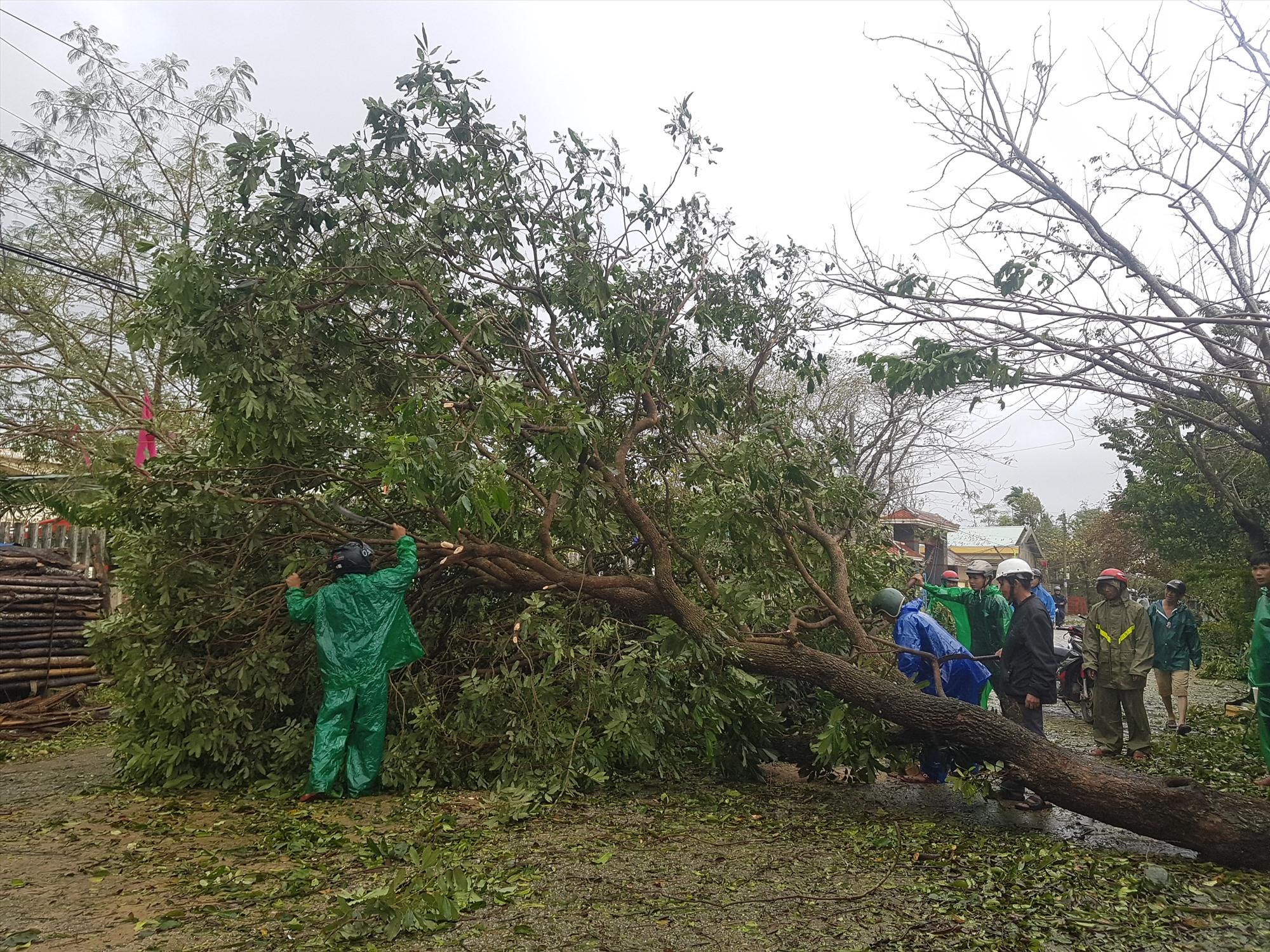 Các tuyến giao thông trên địa bàn huyện Tiên Phước bị ách tắt do cây cối ngã đổ ra đường. Ảnh: DIỄM LỆ