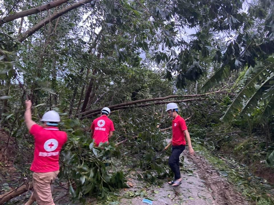 Hội Chữ thập đỏ huyện Tiên Phước cưa cây ngã đổ, chắn ngang quốc lộ 40B. Ảnh: Hội CTĐ tỉnh cung cấp.