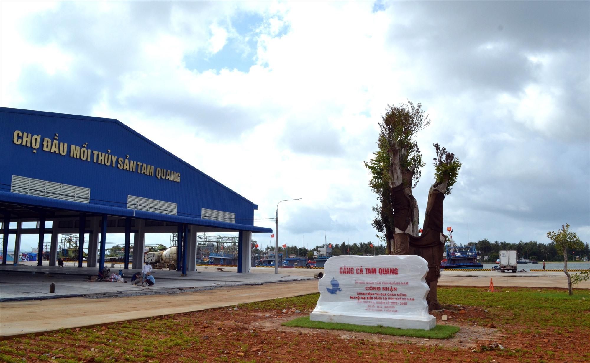 Cảng cá Tam Quang là công trình thi đua chào mừng Đại hội đại biểu Đảng bộ tỉnh lần thứ XXII. Ảnh: VIỆT NGUYỄN