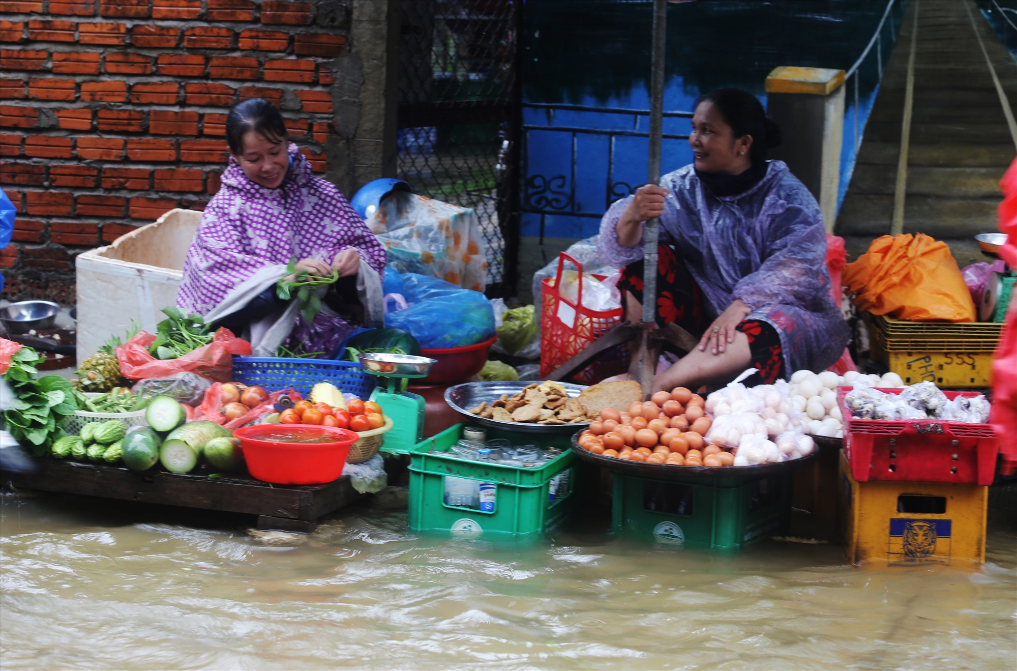 Ông Huỳnh Ngọc Hùng - Chủ tịch UBND xã Cẩm Kim cho biết có 150/1054 hộ trên địa bàn xã đang bị ngập nước. Trong đó, hơn 20 hộ dân thực hiện di dời vì nước ngập sâu.
