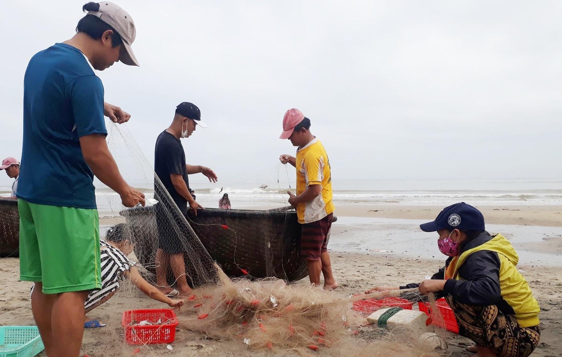 Nhiều ngư dân nam lẫn nữ tranh thủ gỡ cá liệt tại biển An Bàng vào buổi sáng sớm với tâm trạng đầy phấn khởi.