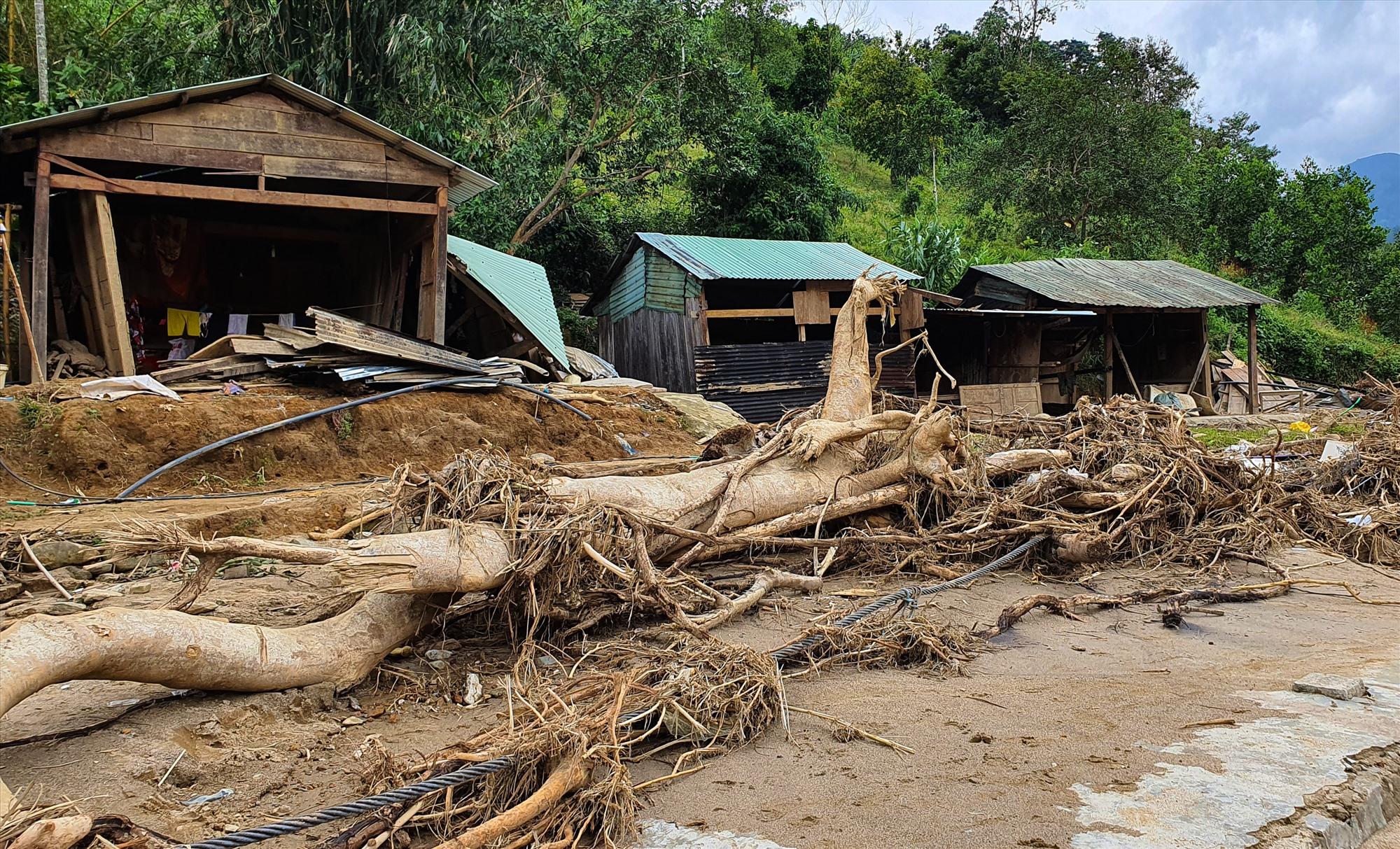 Nơi vốn là trường học, nhà dân giờ chỉ còn trơ nền gạch, nhiều thân cây gỗ lớn trôi dạt vào làng. Ảnh: T.C
