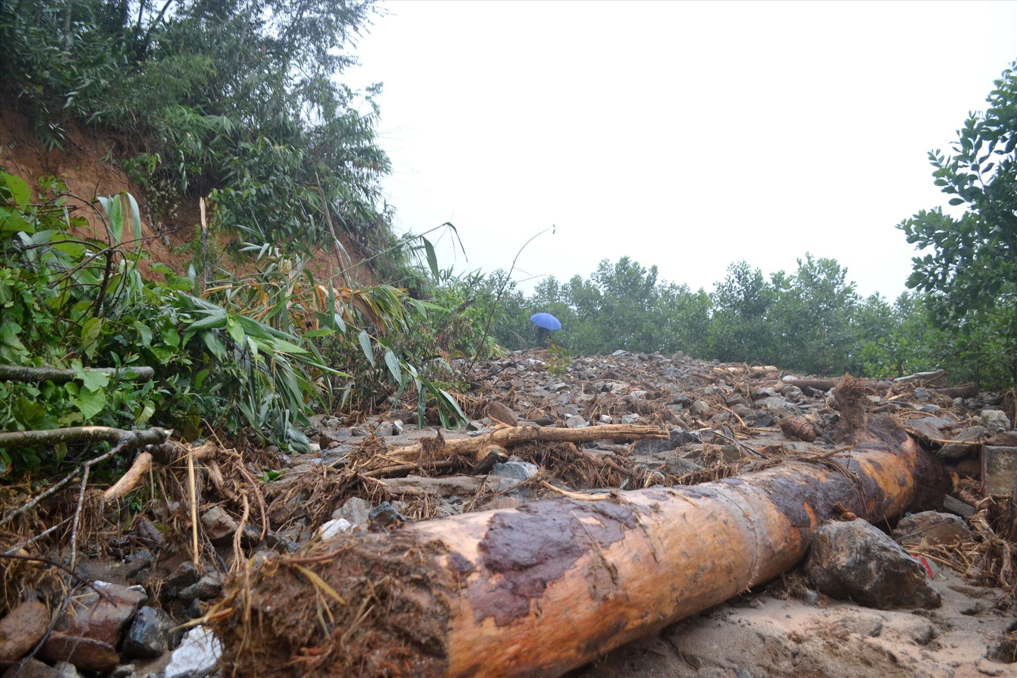 Đất, đá, cây cối sạt lở gây tắc lưu thông đường lên xã Phước Thành. Ảnh: CT