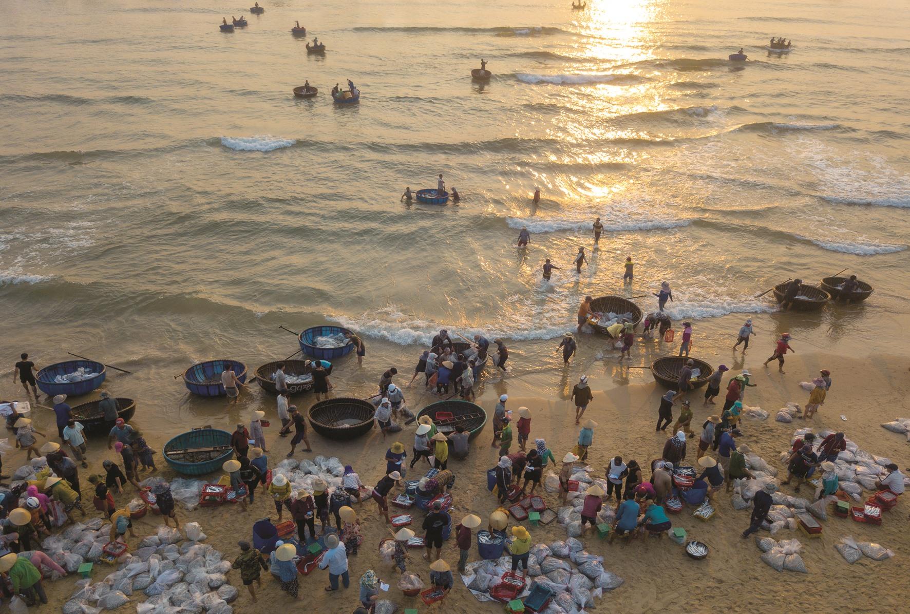 Bến cá xã Bình Minh (Thăng Bình) tấp nập người mua bán lúc bình minh vừa lên.