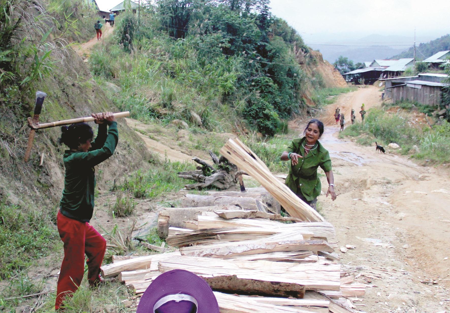 Tranh thủ trời tạnh mưa, phụ nữ ở thôn Cha'lăng (xã Ch'Ơm, Tây Giang) cùng nhau bổ củi khô đưa về nhà dự trữ.