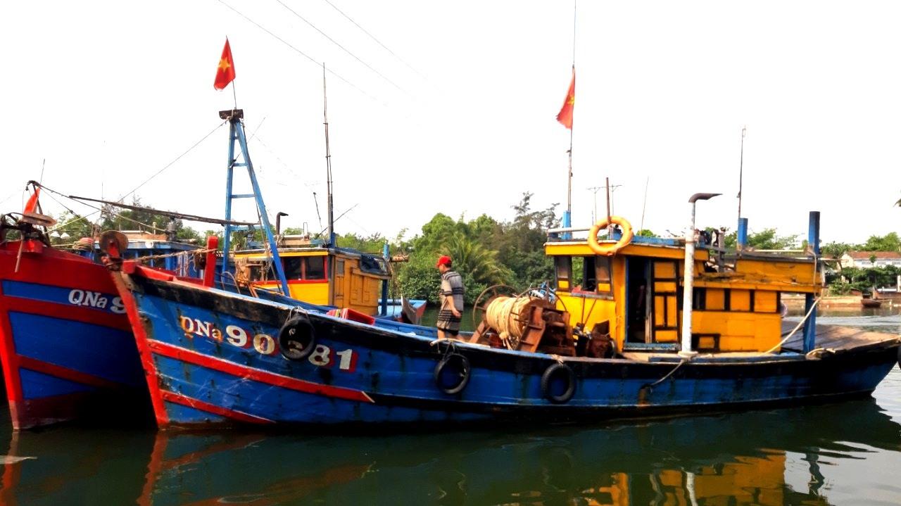 Quảng Nam còn nhiều tàu cá không có đầy đủ giấy tờ hợp pháp khi đi biển. Ảnh: VIỆT NGUYỄN