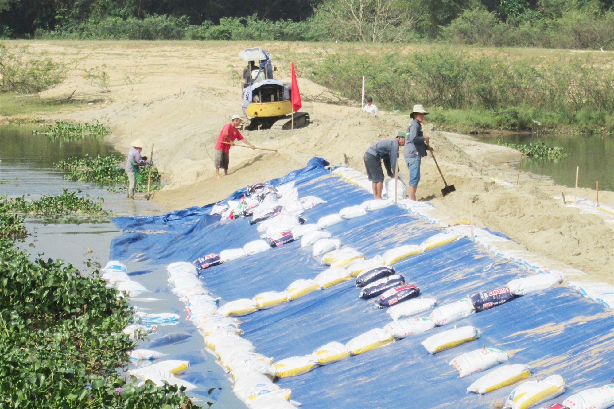 Đắp tuyến đập bổi ngăn mặn tại khu vực Cầu Đen (Nam Phước, Duy Xuyên). Ảnh: T.S