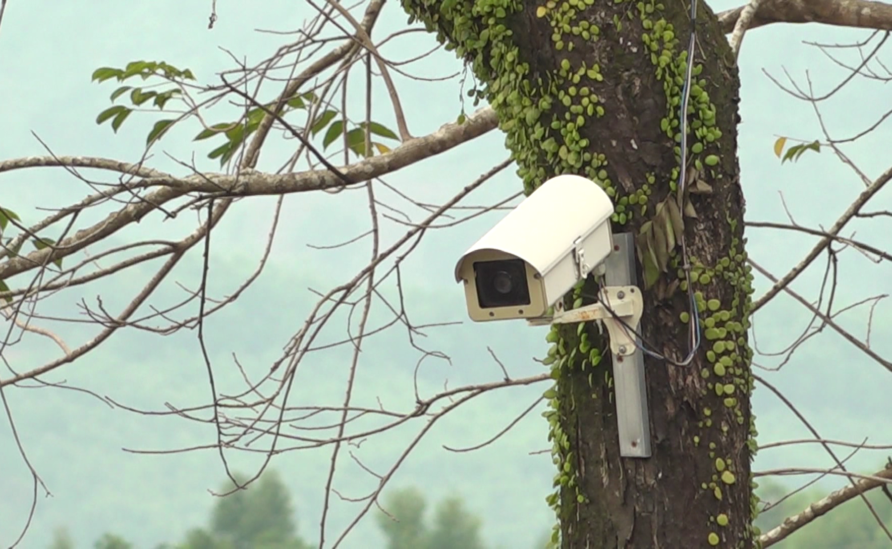 Camera an ninh được lắp đặt ở các tuyến đường.