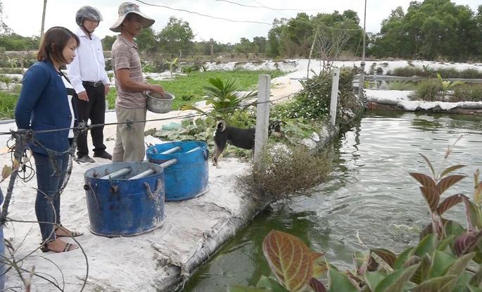 Ông Dương Đức Long đang cho cá ăn. Ảnh: TÂN BIÊN