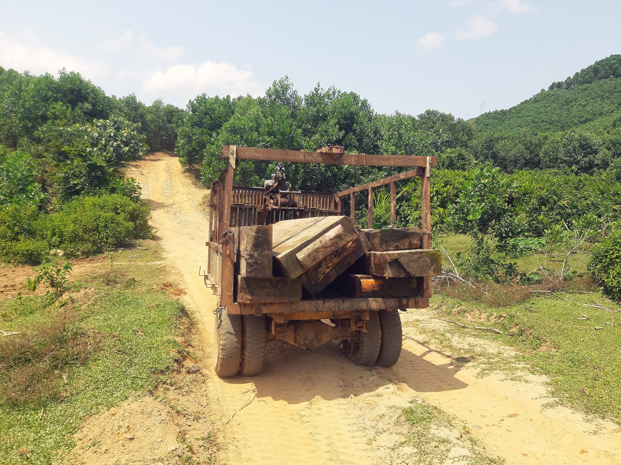 Số gỗ bị thu giữ dưới lòng hồ thủy điện Sông Tranh 3. Ảnh: HOÀI AN