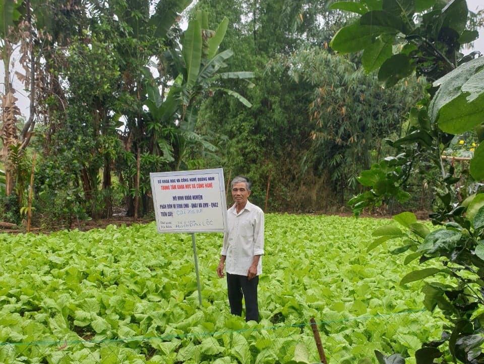 Mô hình sản xuất rau an toàn áp dụng hệ thống tưới phun sương trên địa bàn thôn Phú Long, xã Đại Thắng. Ảnh: T.N