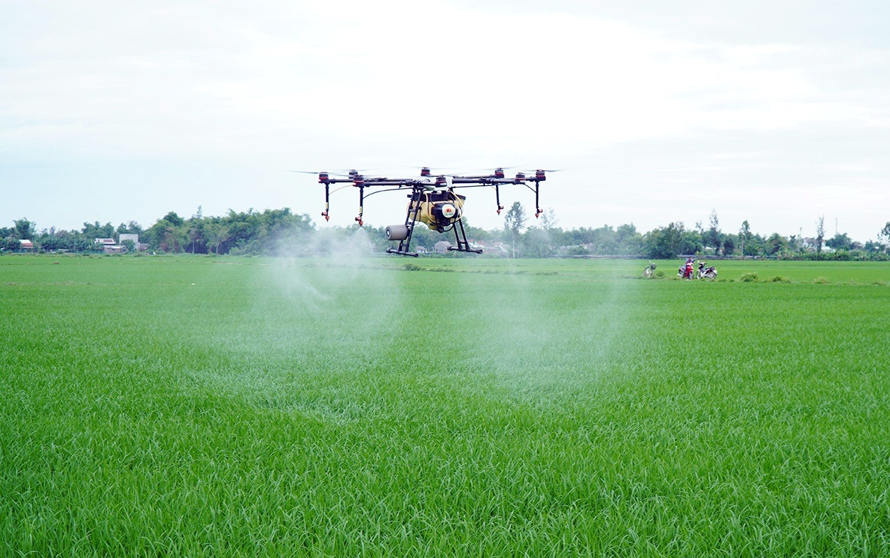 Thiết bị drone phun thuốc trên cánh đồng Vĩnh Xuân, xã Bình Trung. Ảnh: T.B.N