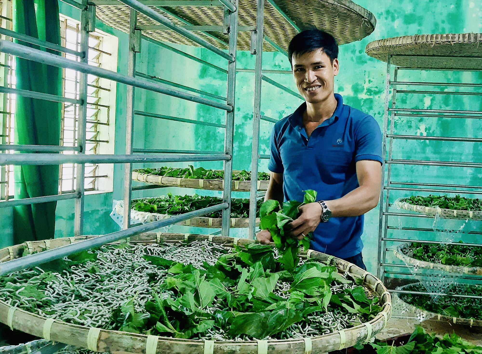 Một trong những khó khăn lớn nhất của nghề trồng dâu, nuôi tằm hiện nay là thiếu lao động trẻ, tâm huyết. Ảnh: S.T