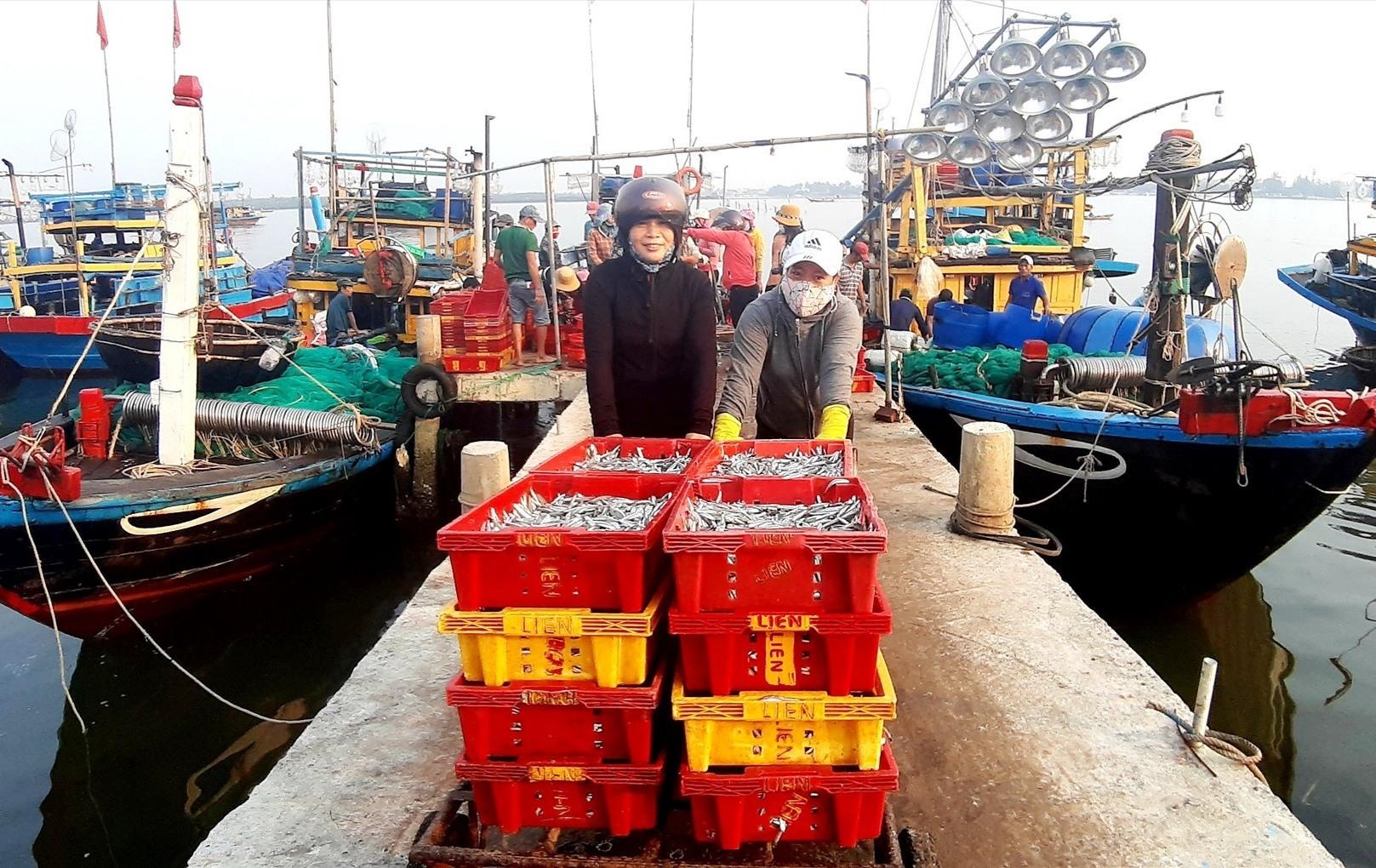 Những năm qua, nghề khai thác hải sản ở Duy Hải mang lại hiệu quả kinh tế cao, góp phần giảm nghèo bền vững. Ảnh: T.S