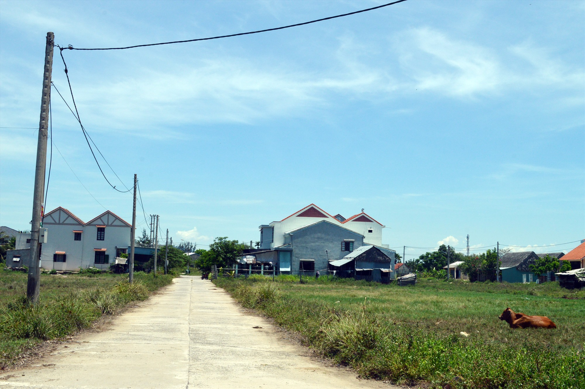 Ông Trương Măng không đủ điểu kiện để được bố trí đất không qua đấu giá tại khu tái định cư Biền Lăng. Ảnh: G.K