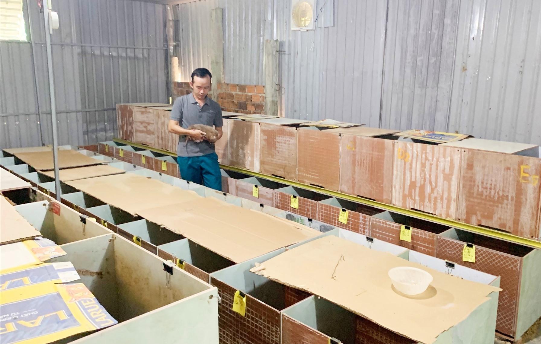 Trại dúi của anh Nguyễn Thanh Sơn. Ảnh: PHAN VINH