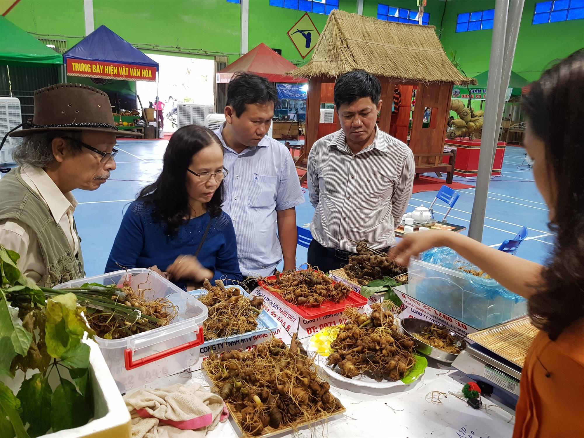 Thương hiệu sâm Ngọc Linh đang mở ra những cơ hội mới đánh thức tiềm năng du lịch của Nam Trà My. Ảnh: N.C