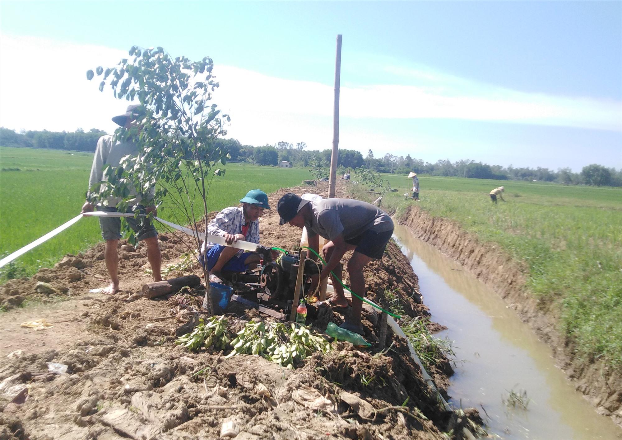 Nắng nóng liên tục, nhiều nông dân chủ động bơm nước để chống hạn cho lúa. Ảnh: T.T