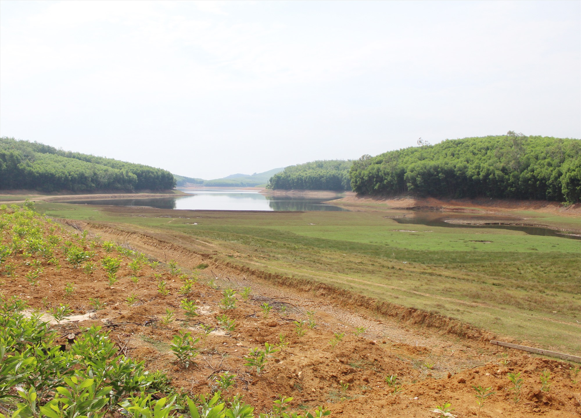 Do nắng hạn kéo dài, mực nước hồ Thái Xuân (Núi Thành) xuống thấp. Ảnh: Văn Phin