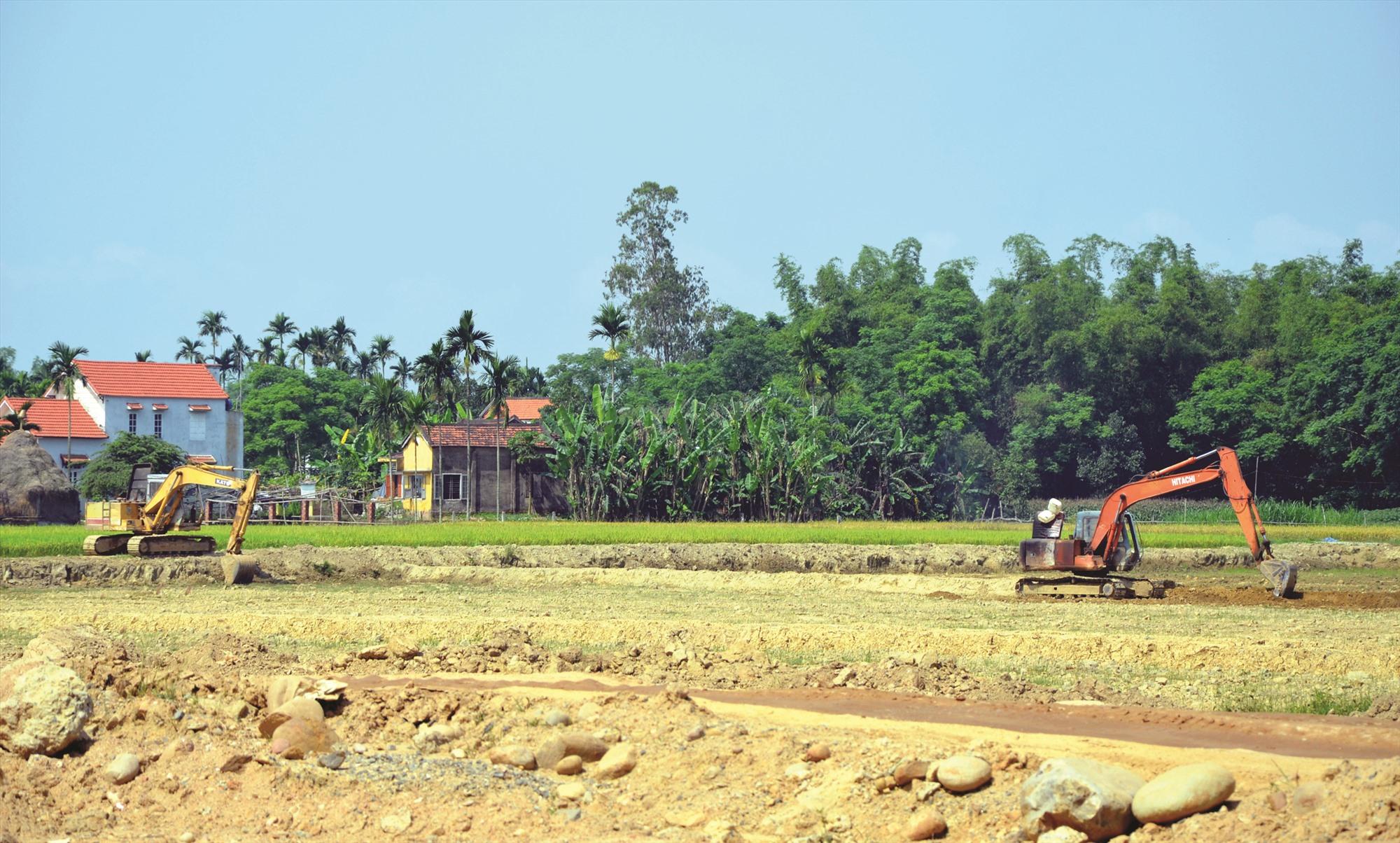 Các dự án thu hồi đất lúa đã được HĐND các cấp xem xét cẩn thận trước khi quyết định cho đầu tư. Ảnh: H.P