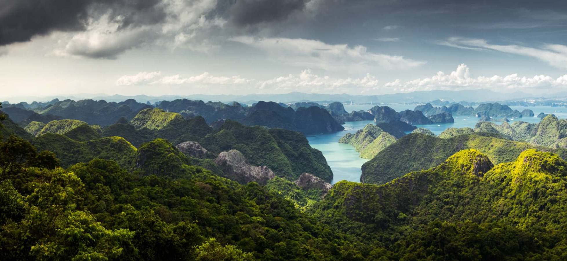 The national park occupies half of the area of Cat Ba. It is considered as a heaven of walking, jogging, climbing and kayaking.