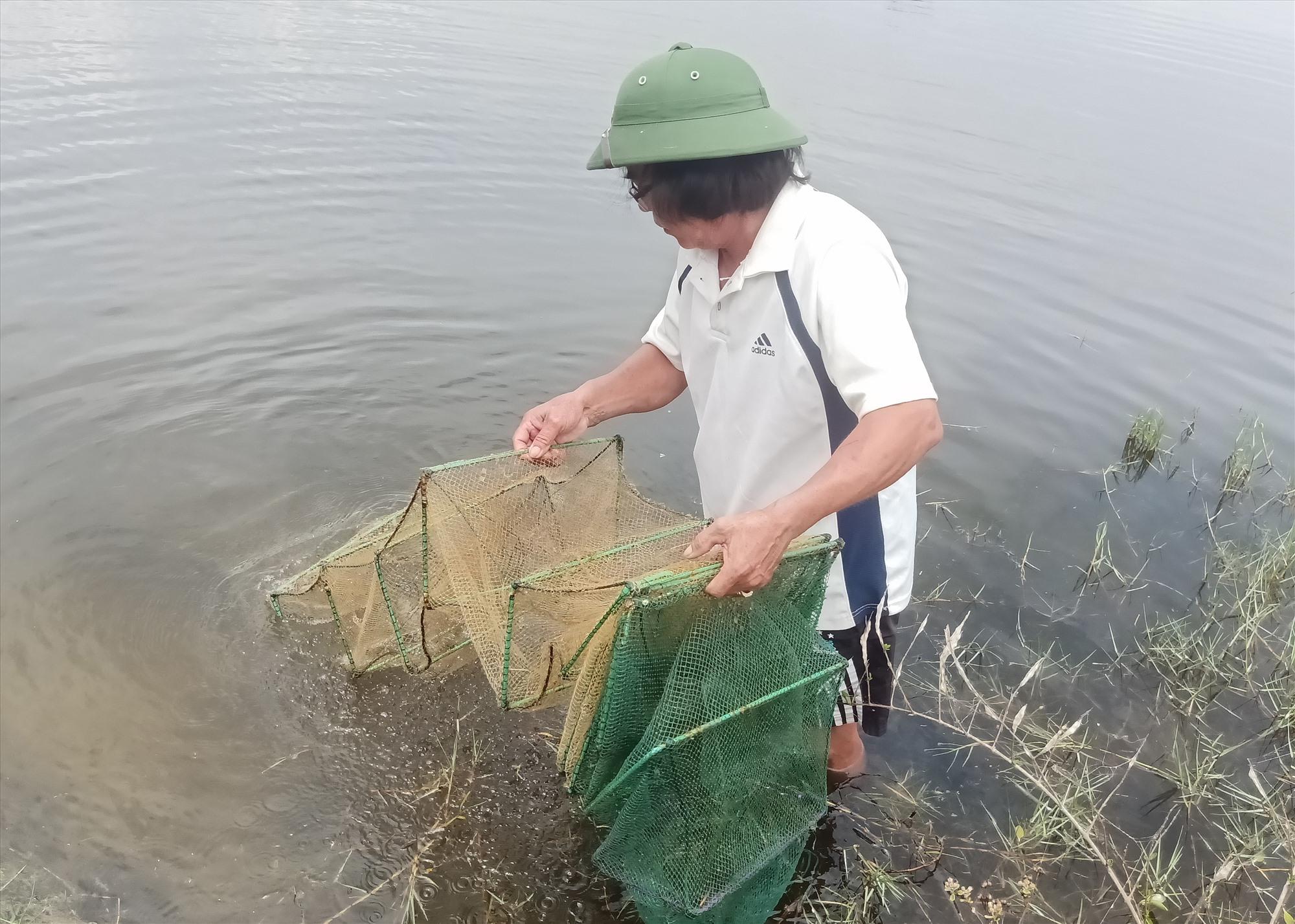 Mô hình nuôi tôm, cua quảng canh theo hướng sinh thái của ông Lê Minh Khuê, xã Tam Xuân 2. Ảnh: H.L