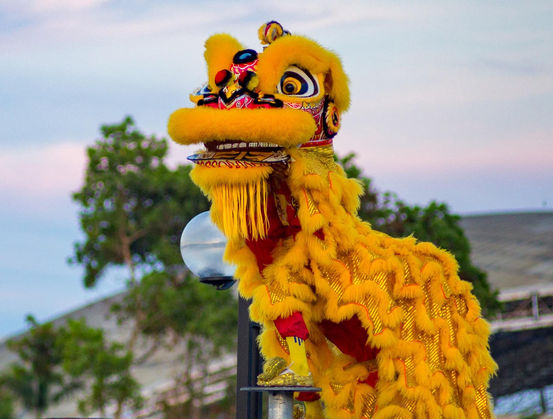 Kim Sư Phố biểu diễn trên Mai Hoa Thung. Ảnh: Thành Tây
