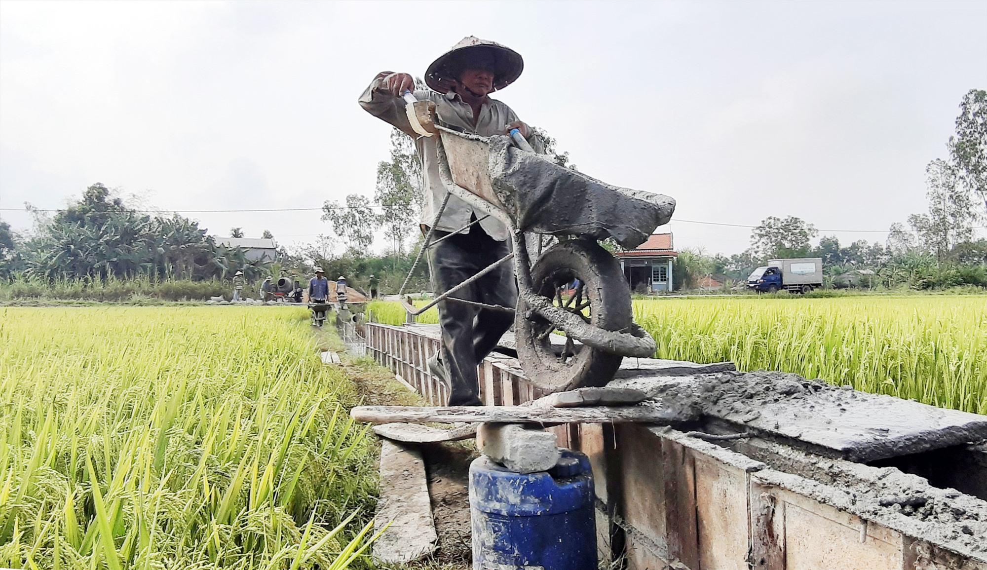 Trong 5 năm qua, Duy Xuyên đầu tư gần 126 tỷ đồng bê tông hóa thêm 138km kênh mương để chủ động cung ứng nước tưới cho cây trồng. Ảnh: N.P