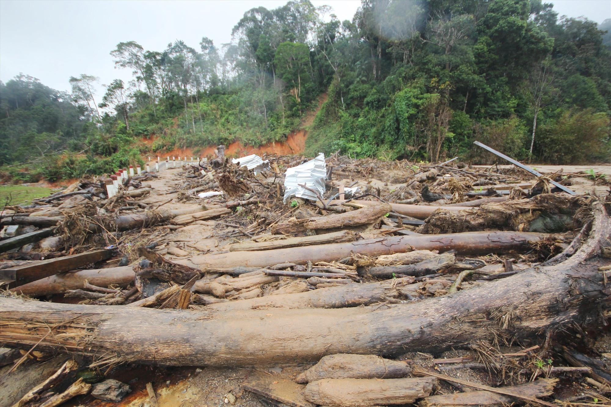 Việc tìm kiếm người mất tích đang phải tạm dừng do lượng cây cối, đất đá quá lớn. Ảnh: T.C