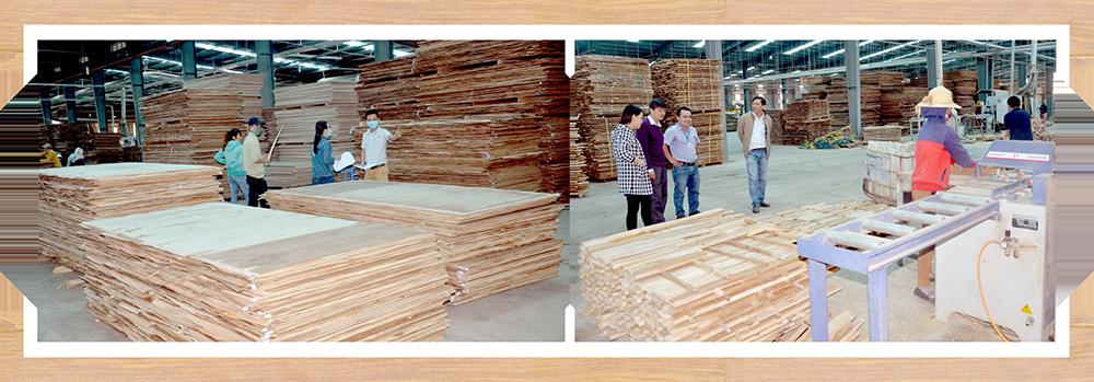 Nhà máy chế biến gỗ ván MDF của Công ty CP Gỗ công nghiệp Quảng Nam tại xã Quế Thọ (Hiệp Đức).