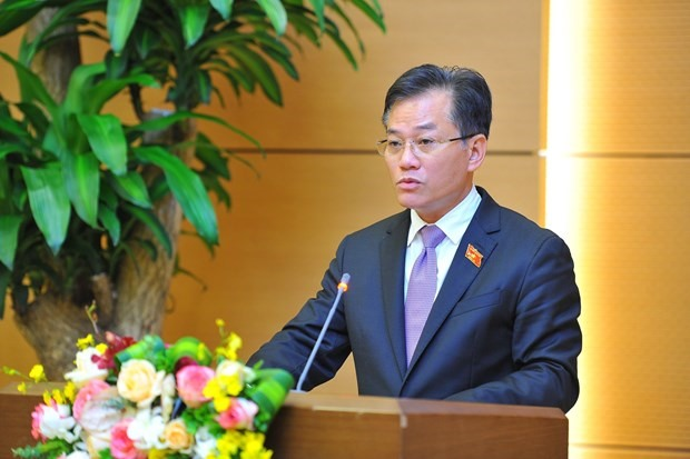 Vice Chairman of the National Assembly Committee for External Relations Don Tuan Phong (Photo: VNA)