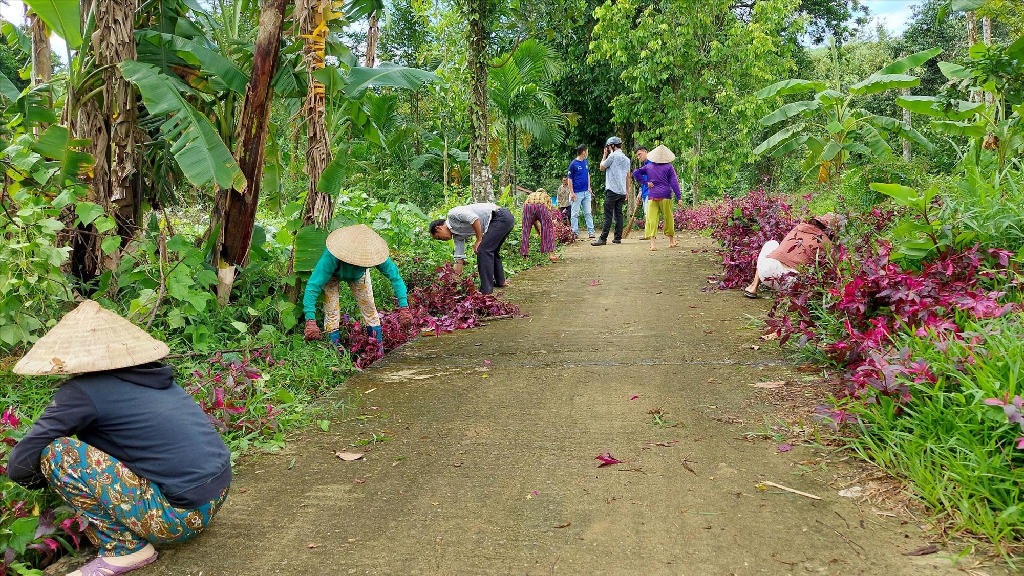 Hội LHPN xã Trà Đông chung tay xây dựng đường hoa xanh - sạch - đẹp. Ảnh: TRÀ MY