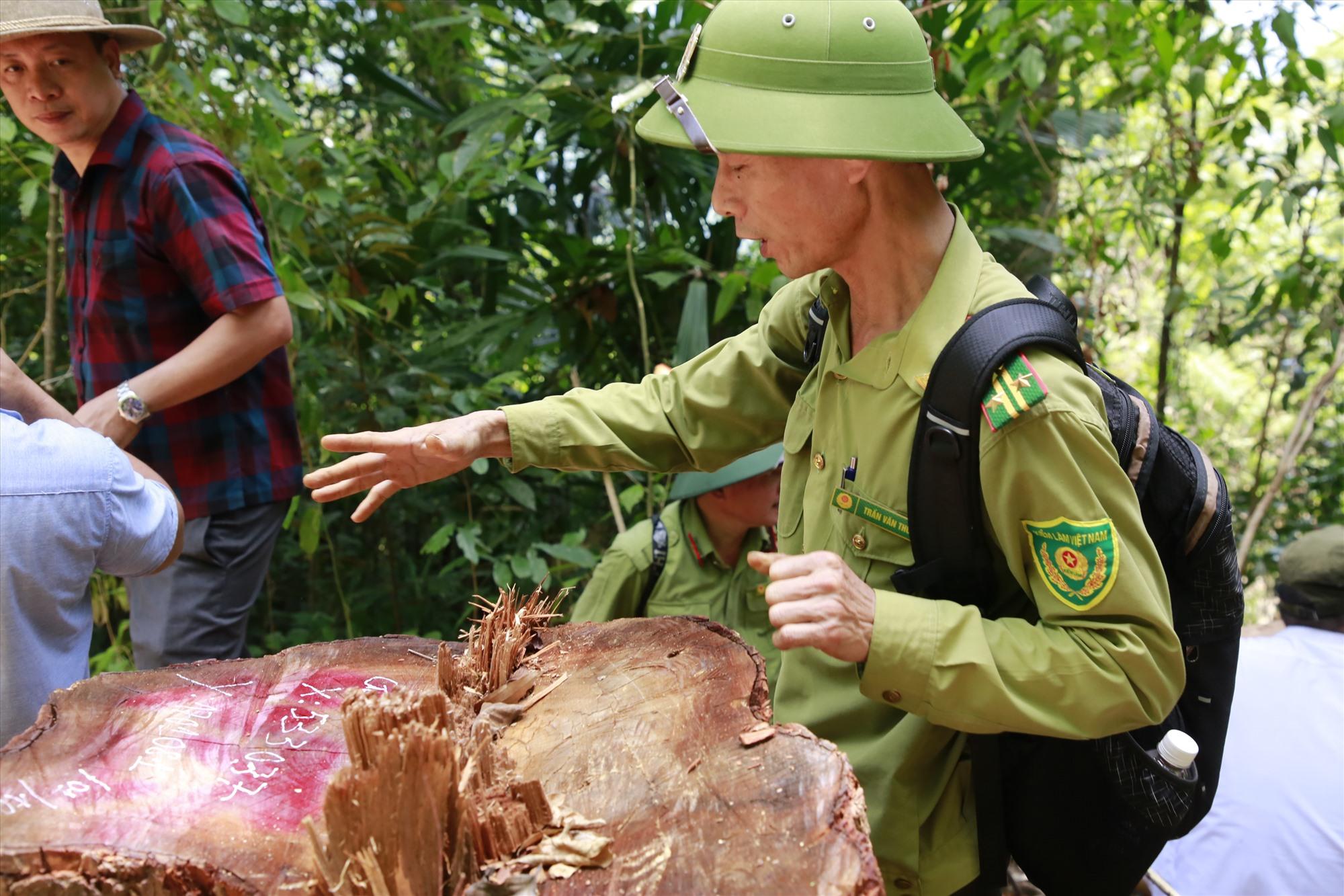 Phó Chủ tịch UBND tỉnh Hồ Quang Bửu yêu cầu kiểm lâm có báo cáo cụ thể về vụ phá rừng vào ngày 4.10. Ảnh: T.C