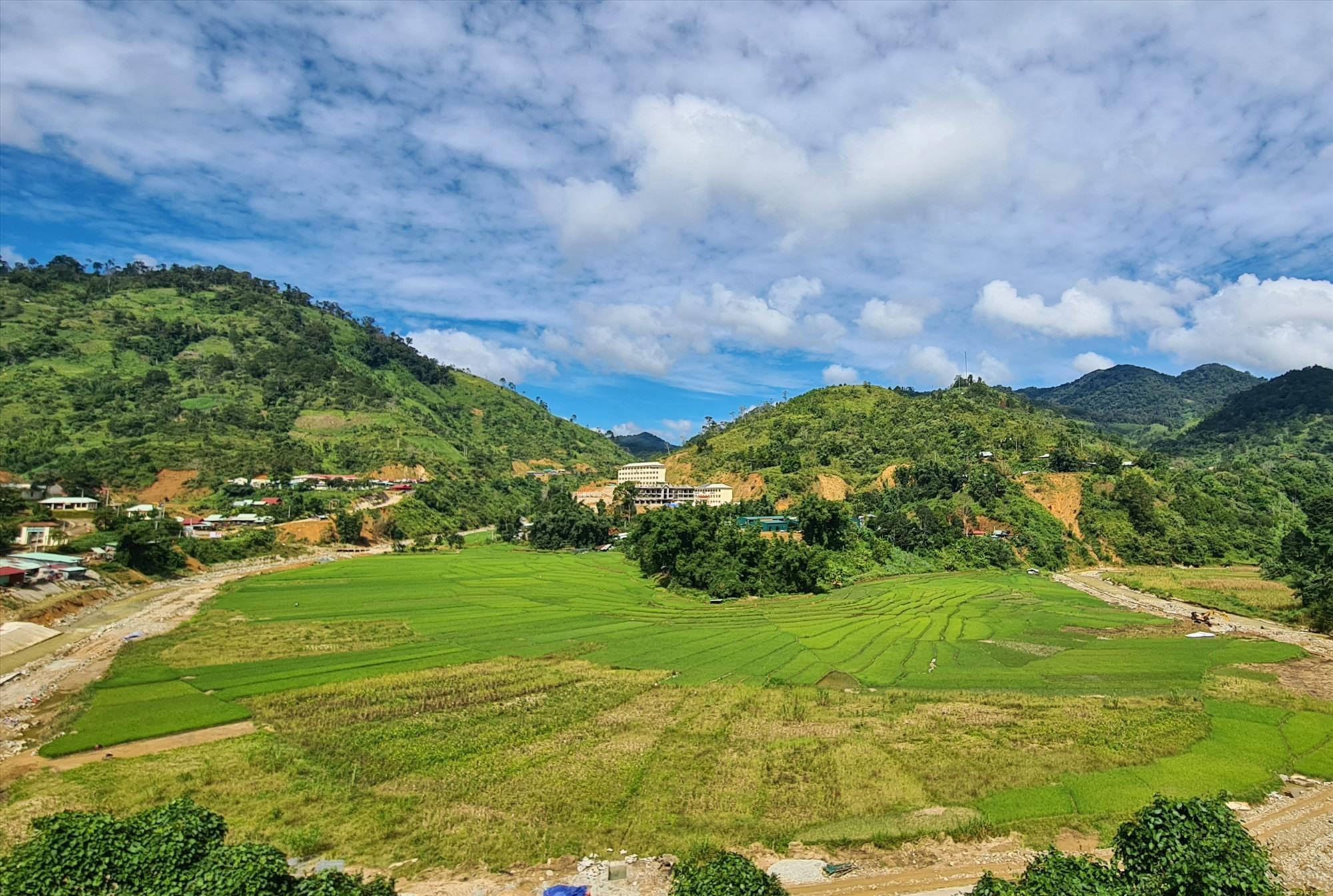 Cánh đồng Chuôr - ruộng lúa nước của cộng đồng Cơ Tu Tây Giang đang dần được khôi phục, đánh dấu sự trở lại bằng màu xanh của lúa.