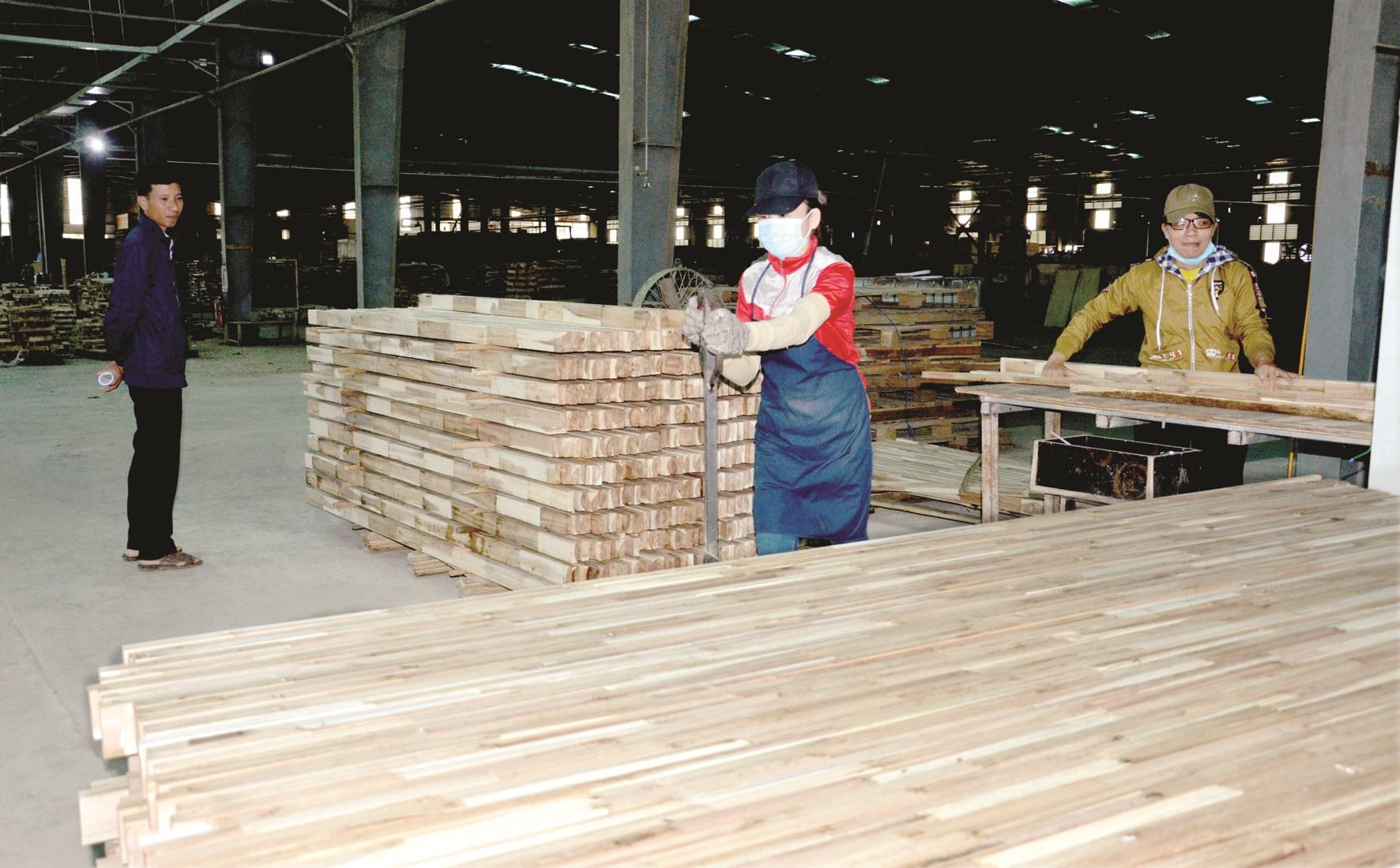 Chế biến gỗ tại nhà máy thuộc Công ty CP Gỗ công nghiệp Quảng Nam (xã Quế Thọ, Hiệp Đức). Ảnh: H.P